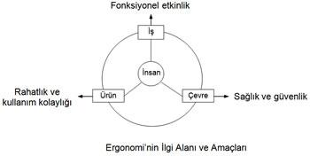 DDF_ergonomi_ilgi_alanlari.jpg